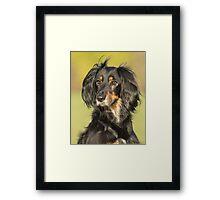Saluki Dog Portrait Framed Print