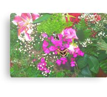 Pink flowers with butterflies Canvas Print
