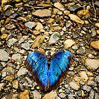 Blue Rainforest by Gregorio Magno Toral Jiménez