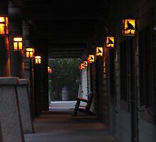 Lights by PicsbyJody