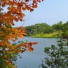 A Touch of Autumn by lorilee