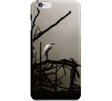 egret iPhone Case/Skin