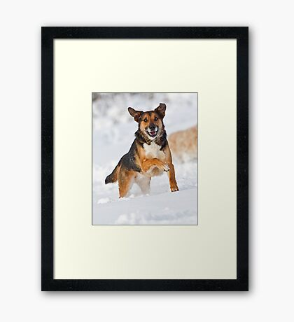 Fun in the Snow Framed Print