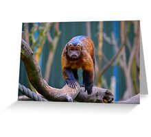 Monkey See... Greeting Card