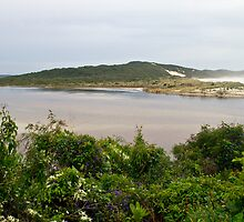 Spring  - Inlet mouth by pennyswork