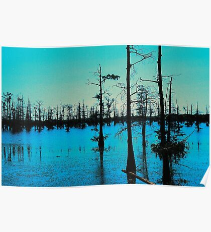 Blue Bayou-Wildlife and Fisheries-Monroe LA Poster
