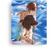 Springers in the snow Canvas Print