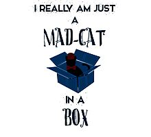 Just a mad cat in a box Photographic Print