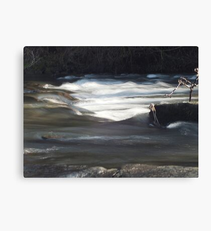 River Dove at Milldale Canvas Print