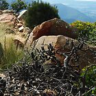 Grampians - a rocky outlook by imaginethis