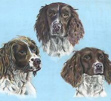 Syncerus Spaniels by Jane Smith