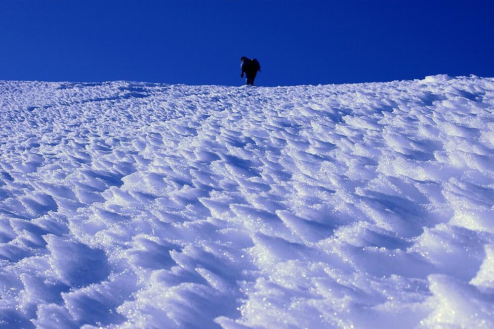 Snow by Gregorio Magno Toral Jiménez