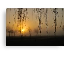 early morning curtain Canvas Print