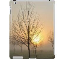 golden light of dawn iPad Case/Skin