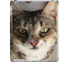 Tabby Cat Kitten Giving Eye Contact iPad Case/Skin