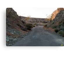Abandon Road Canvas Print