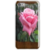 Pink Roses in Anzures 6 Blank P3F0 iPhone Case/Skin