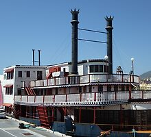 Mississippi Willow Paddle Steamer  by Sue Gurney