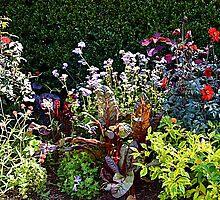 Late Summer Flowers by Ellen Rosen Singer