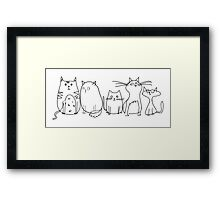 Cute and Funny Crazy Cat Lady Framed Print