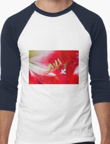 amaryllis flower in the garden Men's Baseball ¾ T-Shirt