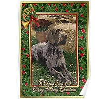 German Wirehaired Pointer Christmas Poster