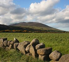 The Mountains Of Mourne by Adrian McGlynn