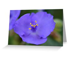 FlowerC Greeting Card