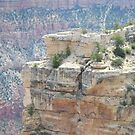 Grand Canyon Views (1) by Prettyinpinks