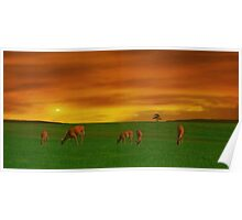 GRAZING TIME ON THE PLAINS Poster