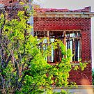 Woodmen Circle Home, Sherman, Texas by aprilann