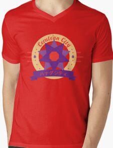 Cerulean City Gym Mens V-Neck T-Shirt