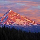 Mt Hood Sunset by Jennifer Hulbert-Hortman