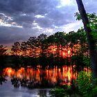 Firey Sunset by Cynthia Broomfield