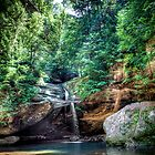 Forest Pool -- Hocking Hills by njordphoto