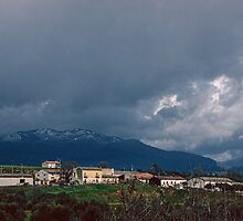 On R534 nr Casino Gallo Italy 198403300008 by Fred Mitchell