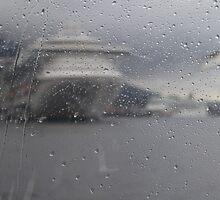 Thru the rain by tazbert
