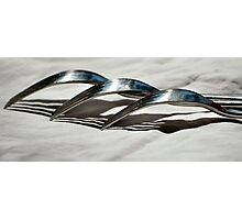 Silver Service Photographic Print