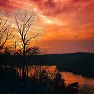 Missouri on Fire... by Tracie Louise