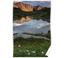 Loveland Lakes and flowers Poster