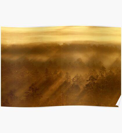 27.8.2013: Sunrise in Torronsuo National Park II Poster