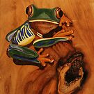 Pyrography: Red Eyed Tree Frog by aussiebushstick