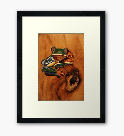 Pyrography: Red Eyed Tree Frog Framed Print