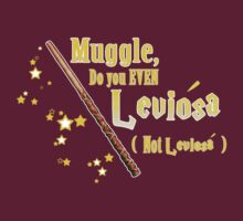Muggles can't Leviosa by lordcamelot