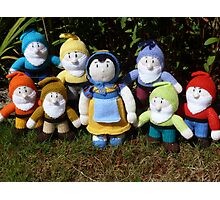 Hand Knitted Snow White and her seven dwarfs Photographic Print
