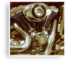96 Cubic Inches Canvas Print