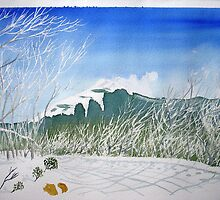 mt stirling in winter August 2013 by taariqhassan