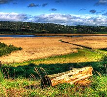 Tamar Island Views by Marcus Salter