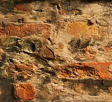 Old Brick Wall by visualspectrum