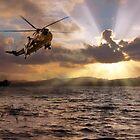 Sea King by J Biggadike